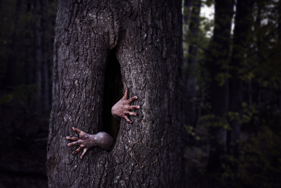World Shakespeare Festival hosts 'Forests' at the Old Rep Theatre in Birmingham